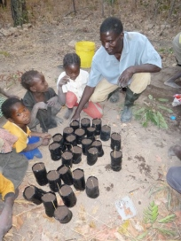 Ba Allan planting trees with some of Mfuba's younger residents.