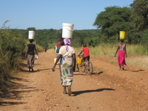 Carrying water. Bamaayo is in the foreground, balancing 20 liters on her head.