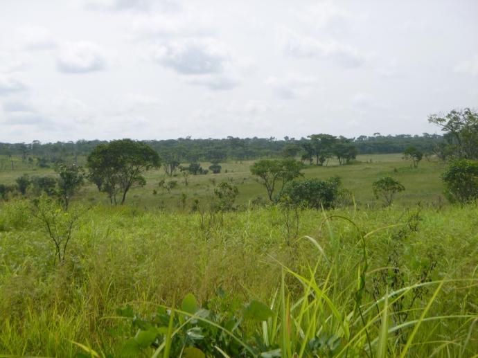 Unusually hilly dambo area near fellow PCV Evan's village of Malonda.