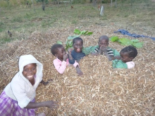 Joyci, Lavenda, Agri, Katongo, and Donna having a grand old time in a pile of dried bean vines.