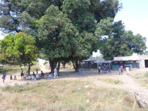 Women selling food under mango trees.