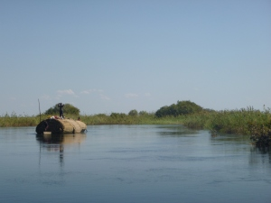 Paddling a heavy load of reed mats to market in Mongu. The mats were piled so high that, at first glance, we thought this was a house boat!
