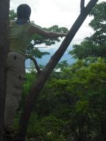 Me in a tree overlooking Lake Tanganyika