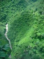 The Kalambo River snakes below the falls.