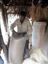 Boyd sewing maize sacks.