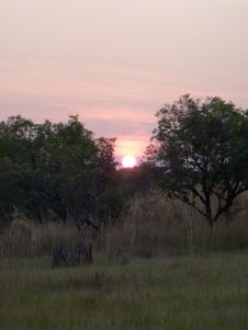 Sunset at the dambo.