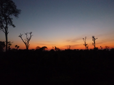 Sunrise over a slashed-and-burned field on an early-morning bike ride out of Mfuba.