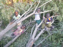 Girls of Mfuba, playing on a recently chopped-down tree. (I was told it was shading out a small orange tree, so it just had to go.)