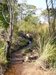 """A branch of the """"Mfuba River."""" I'd call it a creek."""
