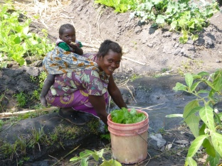 Ba Jennifer washing leafy greens in her garden with baby daughter Beauty on her back. All these veggies together cost about 1 kwacha.