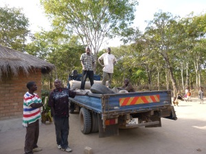 Bashi Lucky and Ba Evans loading maize into the back of a truck in Ba Bernardi's yard. This was taken last year, before Ba Bernardi got his new metal roof.