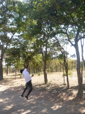 Chola throwing rocks at an imifutu tree to knock down the delicious black fruits.