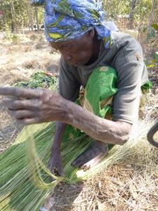 Banakulu Teba weaving wetland grasses into a broom.