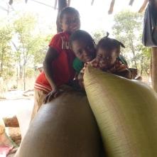 Joyci, Stephen, and Gile goofing around atop some maize sacks in their family's nsaka.