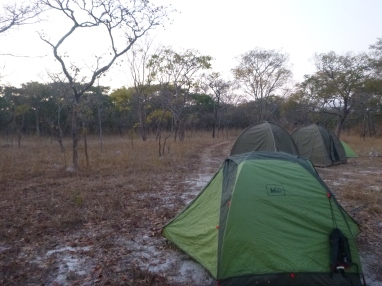 Camp in a miombo woodland.