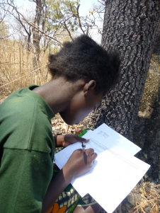 Cynthia records findings for the Green Pride's diversity plot.