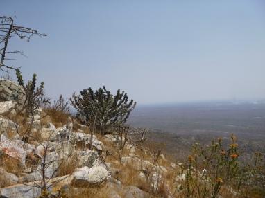 Mount Lavushi view.