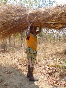 Seven-year-old Doro carrying a huge bundle of roofing grass.