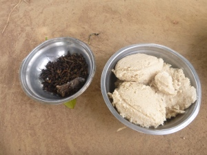 Bush rat and baby caterpillars, served with ubwali.