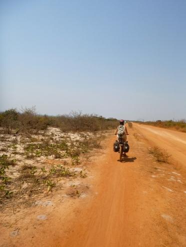 Biking along the road from Lubwe to Samfya, which totally reminded me of biking through scrub brush in coastal California.