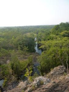 Pristine forest in the valley below.