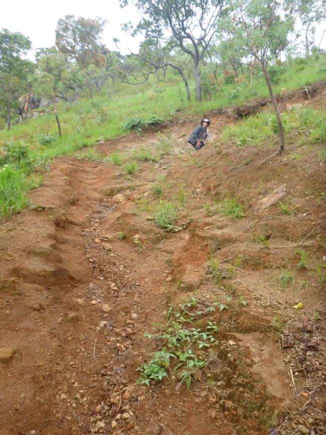 Steep, ridiculously eroded trails were a staple of the trip. This is what happens when you chop down all the native trees ...