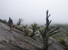 Ba Dennis on the way up Sapitwa.