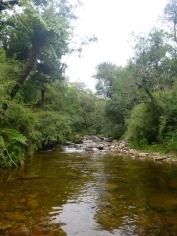 Lichenya River.