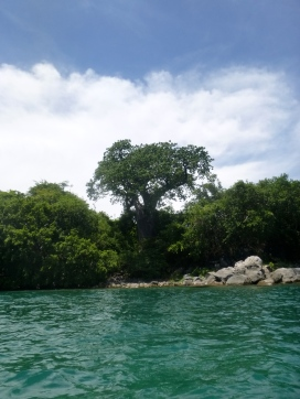 Lake Malawi island view.