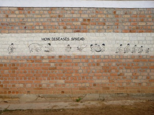 A great educational mural painted on a school in nearby Mungwi District. I took this almost two years ago and have been just waiting for the chance to post it!