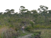 The path to Rodney's village - one of the most remote sites I've visited.