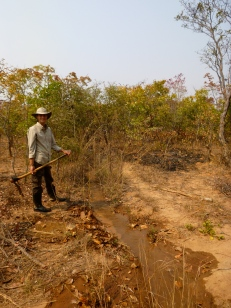 In Samuel's village, a man-made furrow carries water to crops even in the dry season, so people can farm year-round.