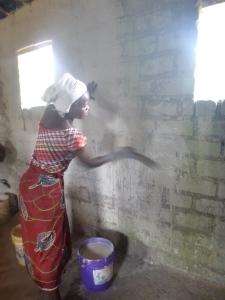 Bana Chola whitewashing classroom walls using mud and a grass broom.