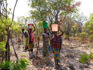 Women of Mfuba carrying buckets of water to the brick-making pit. Water=mud. Mud=bricks.